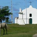 <b>Brasile, Viaggio a Bahía e Ceará: da São Paulo a Trancoso</b>