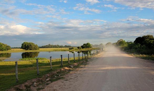 Pantanal,Mato Grosso do Sul