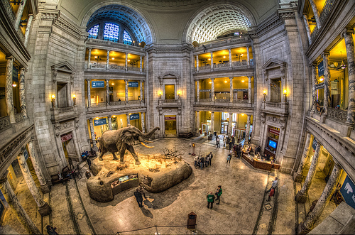 Photo of National Museum of Natural History in Washington, D.C.