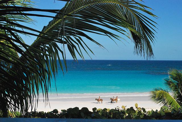 Harbour Island: le Spiagge Più Belle delle Bahamas. Come Arrivare, Dove Alloggiare ad Harbour Island e le Gite Da Non Perdere