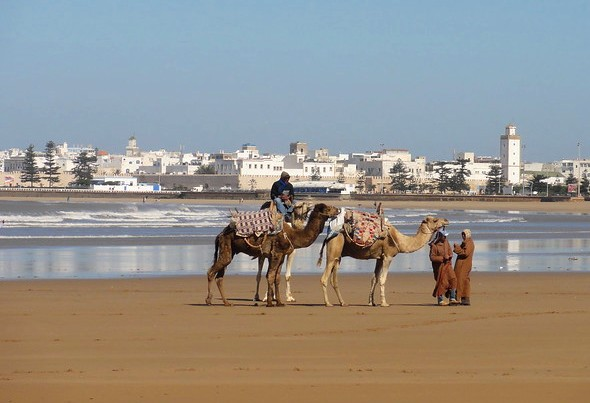 Essaouira from the Beach, Morocco
