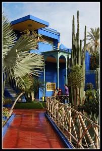 Jardin Majorelle, Ville Nouvelle, Marrakech