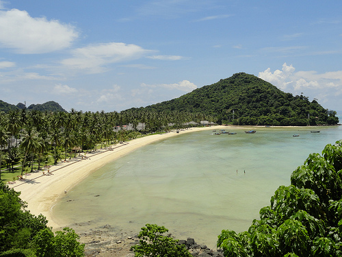 A Shot of Lo Bakao Beach, Phi Phi Island