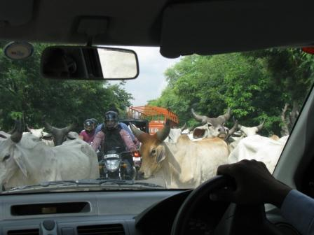 Travelling by Car in India