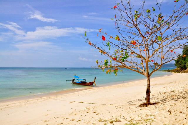 Bamboo Island, Phi Phi Island, Thailand