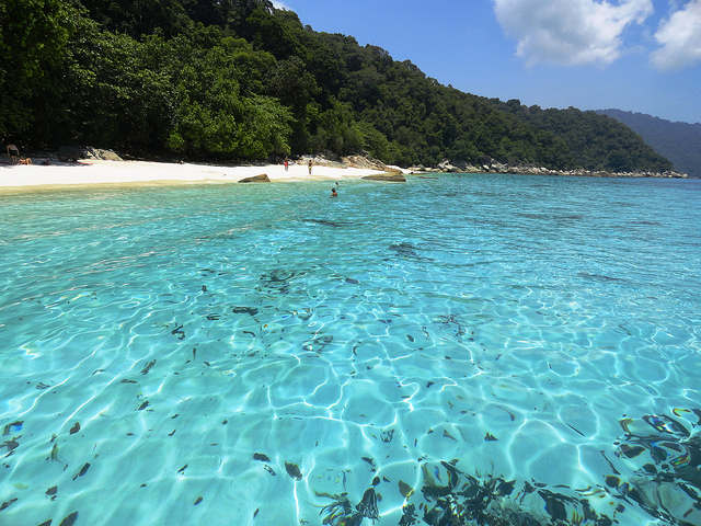 A Picture of Turtle Bay, Perhentian Besar, Malaysia