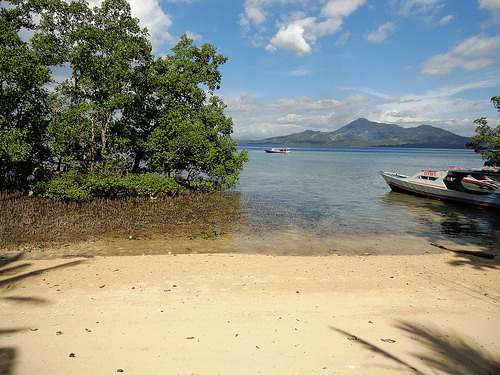 A mangrove beach in the middle of the East Coast of Pulau Bunaken, the coast of North Sulawesi is in the background, Indonesia