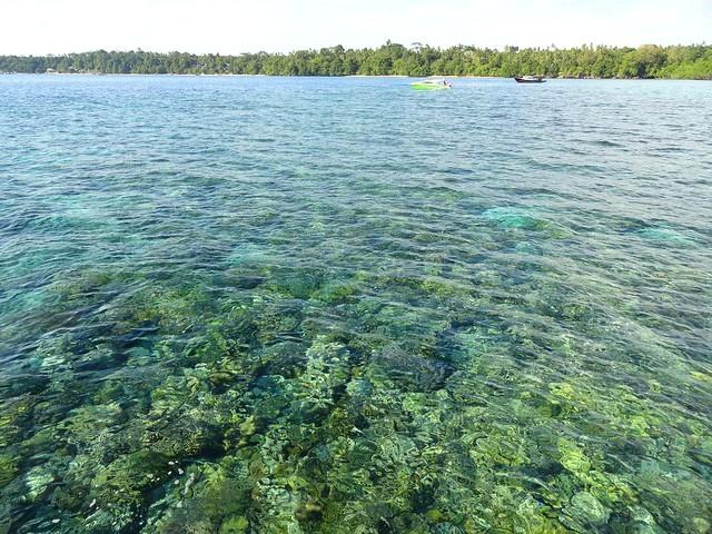 Snorkeling Tour along the Eastern Coast of Pulau Bunaken, Sulawesi, Indonesia