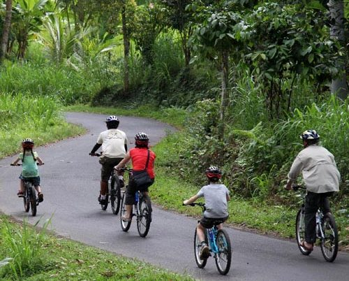 Cycling in the Countryside between Batur and Ubud, Bali, Indonesia
