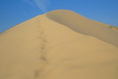 Kelso Dunes Summit in Mojave Preserve in California