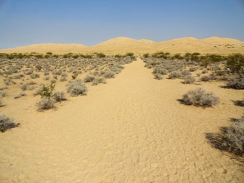 Kelso Dunes from Kelso Dunes Trailhead in Mojave Preserve in California