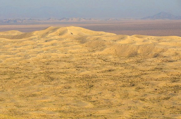 Mojave National Preserve from Kelso Dunes in California
