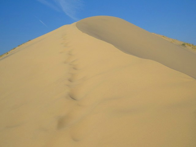 Top of Kelso Dunes, Mojave Preserve, California