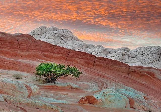 Guida a Page in Arizona: Come Arrivare, Dove Alloggiare e Cosa Fare