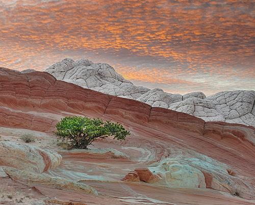 Guida a Page in Arizona: Come Arrivare, Dove Alloggiare, Cosa Fare ed il Clima