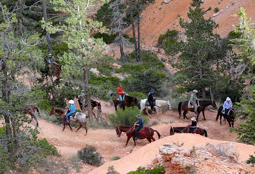 Horse Riding on Peek A Boo Loop, Bryce Canyon National Park, Utah