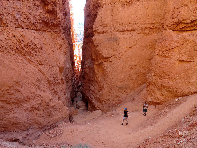 Entrance to Wall Street Slot Canyon on the Navajo Loop, Bryce Canyon National Park, Utah