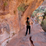 The easy but scenic walk to Canyon Overlook in Zion National Park in Utah