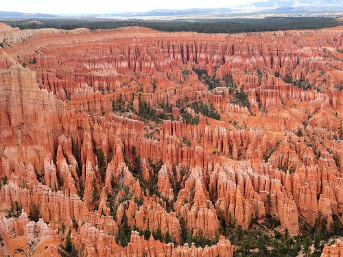 View of Bryce Amphitheater from the Rim Trail, Bryce Canyon National Park, Utah