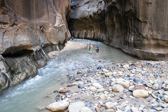 Wall Street, The Zion Narrows, Zion National Park, Utah