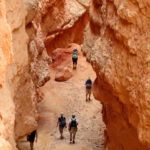 Walking Inside Wall Street Slot Canyon on the Navajo Loop in Bryce Canyon National Park in Utah