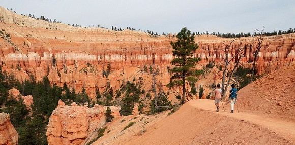 Walking Peekaboo Loop Figure 8 Combination, Bryce Canyon National Park, Utah