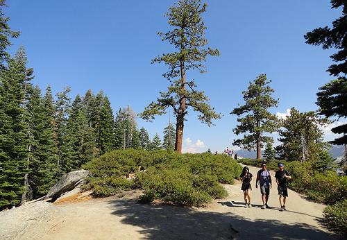 Glacier Point, Panorama Trail, Yosemite National Park, California
