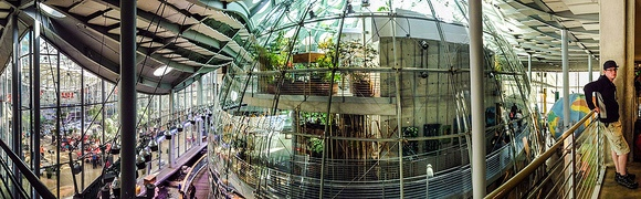 Rainforest Dome, San Francisco Academy of Science, California