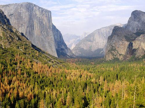 Yosemite Valley from Tunnel View Vista, Yosemite National Park, California