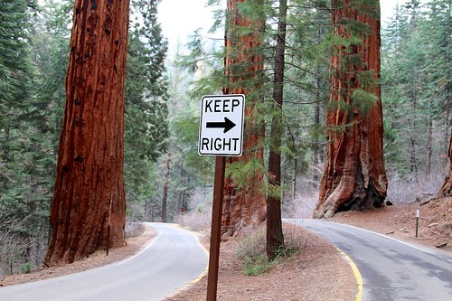 Keep Right on the Road… Generals Highway, Sequoia National Park, California
