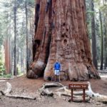 <b>Sequoia e Kings Canyon National Park: Come Arrivare, Dove Alloggiare e Come Spostarsi. Il Clima ed i Pericoli</b>