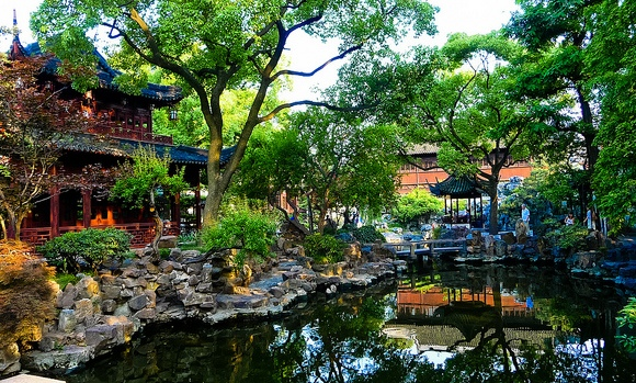 Lake and Trees, Yuyuan Garden, Shanghai