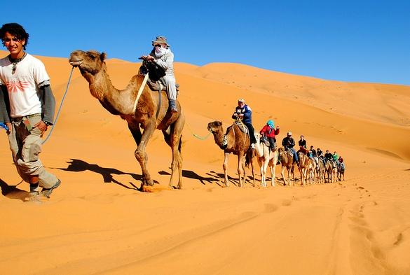 Camel Ride in Erg Chebbi, Merzouga, Morocco