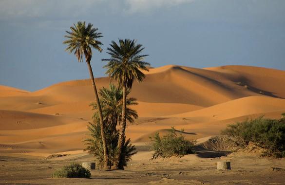 View of Sand Dunes, Erg Chebbi, Merzouga, Morocco