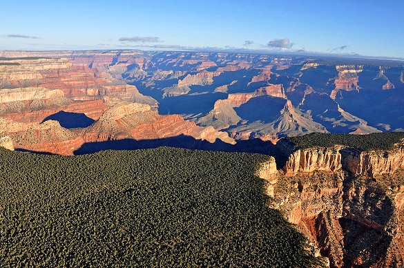 View as the Aircraft Leaves the Canyon and Begins to Fly over the South Rim Forest, Grand Canyon National Park, Arizona, United States of America