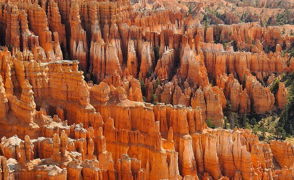 Hoodoos, Bryce Canyon, Bryce Canyon National Park, Utah, United States of America