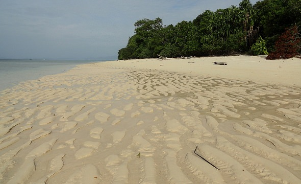 Mid North-east Coast at Low Tide, Mantanani Island, Sabah, Malaysian Borneo
