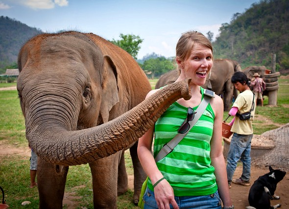 Le Migliori Escursioni Etiche per Vedere gli Elefanti a Chiang Mai nel Nord della Thailandia