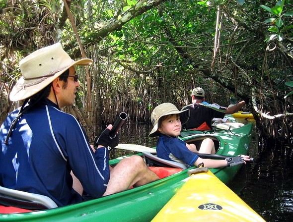 Kayaking in Everglades Mangrove Tunnel, Big Cypress Swamp National Preserve, South Florida