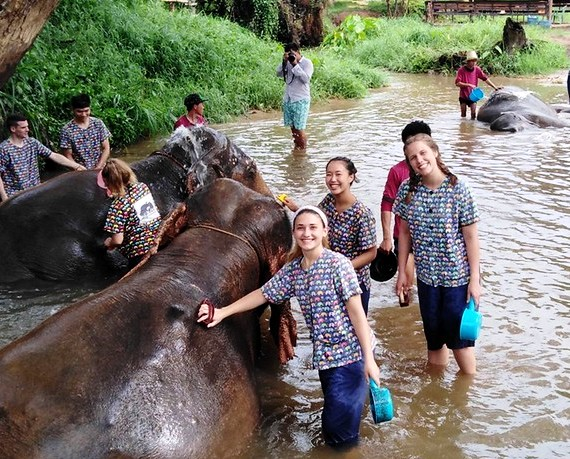Washing the Elephants at Kanta Elephant Sanctuary, Chiang Mai, Thailand