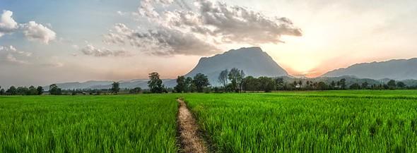 Chiang Dao, North of Chiang Mai, Thailand