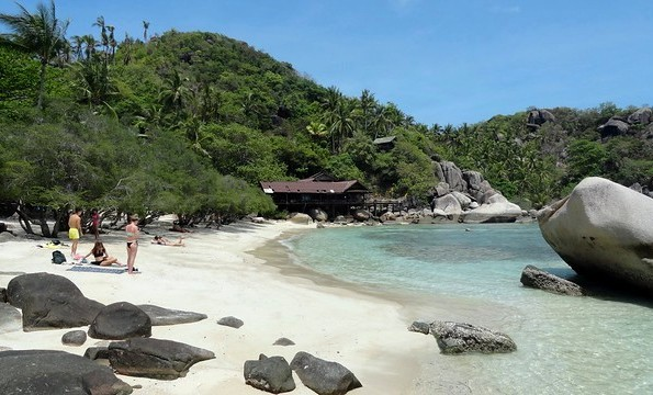Relax at Beautiful Freedom Beach, Koh Tao, Thailand