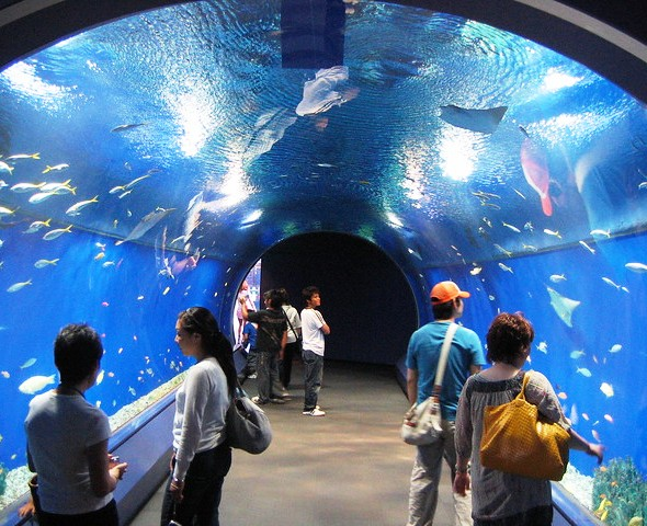 Osaka Aquarium Kaiyukan, Tempozan Harbor Village, Osaka Bay Area, Japan