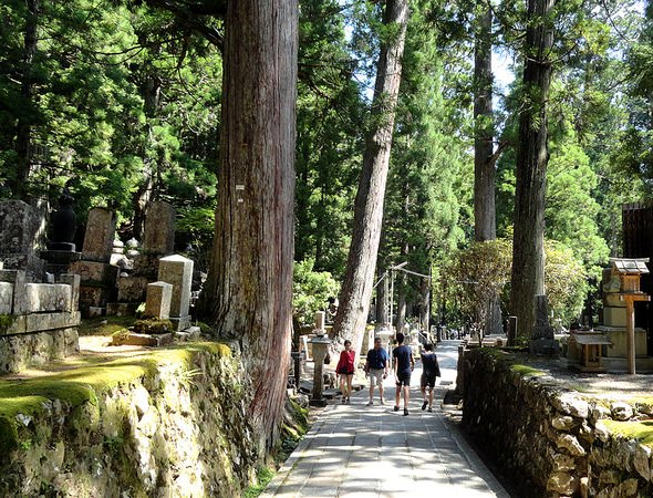 Walking Inside Okunoin Cemetery in Daytime, Koyasan, Japan