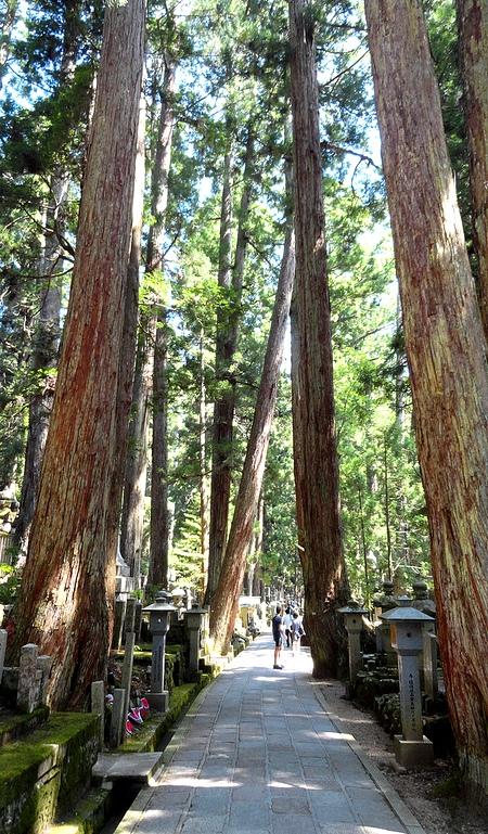 Walking Path Inside Okunoin Cemetery, Koyasan, Japan