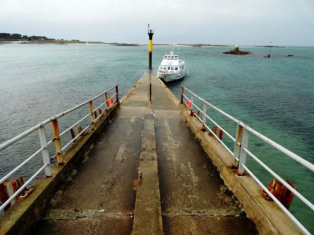 Boat coming from l'île de Batz approaching Quai Neuf, the Pier of Roscoff with Low Tide, Finistère, Bretagne, France