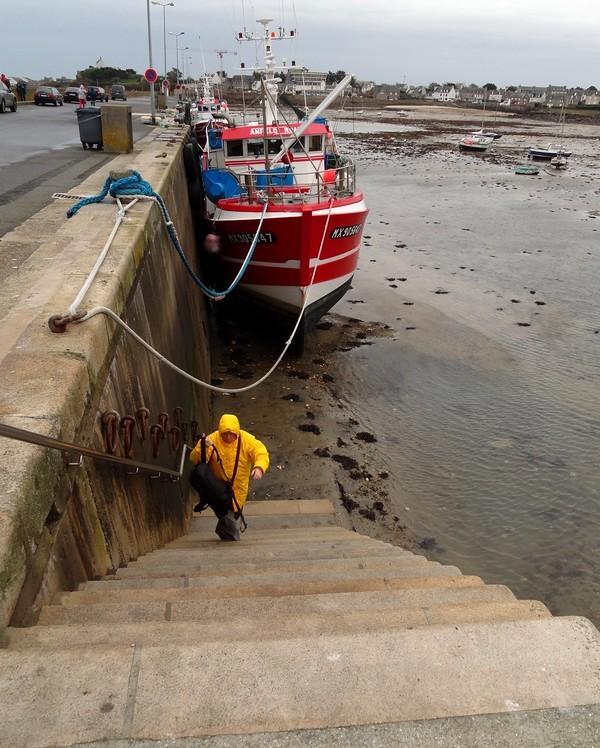 Vieux Port at Low Tide, Roscoff, Finistère, Bretagne, France