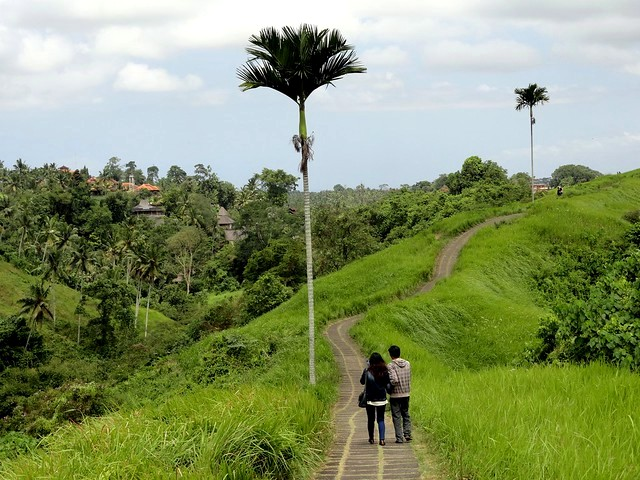 The easy and paved trail of Campuhan Ridge Walk, Ubud, Bali, Indonesia