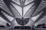 I Musei Più Belli ed Interessanti di Rio de Janeiro