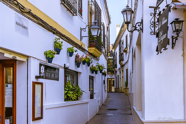 Juderìa, The Jewish Quarter, Córdoba, Andalusia, Spain